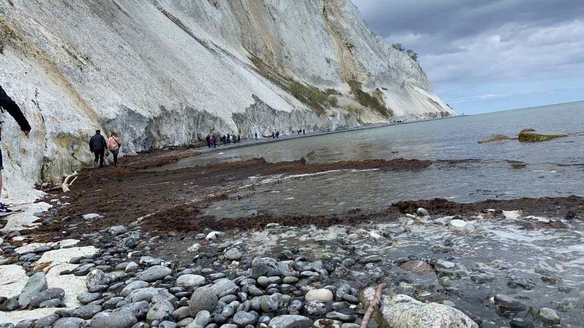 mons klint rocks denmark